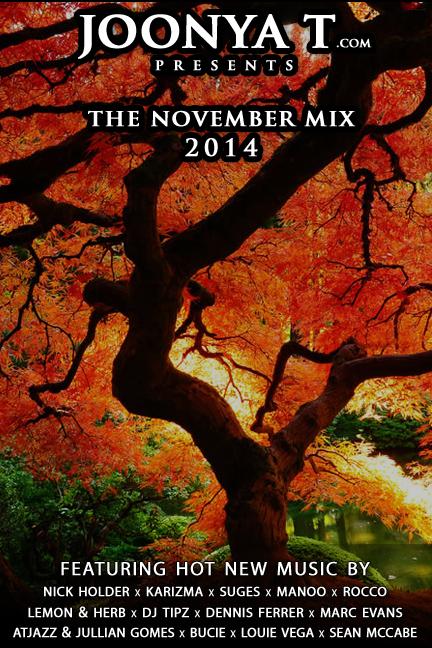 theNovemberMix2014